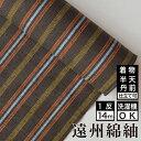 遠州綿紬 S-33 -中秋(ちゅうしゅう)- 綿 着物 洗える着物 大人可愛い おしゃれな きれいめ