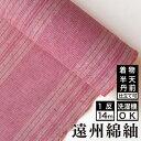 遠州綿紬 S-48 -明明(あかあか)-綿 着物 洗える着物 大人可愛い おしゃれな きれいめ