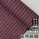 遠州綿紬 TB-61 石榴 -ざくろ-着物 洗える着物 生地 コットン ピンク 大人可愛い おしゃれな きれいめ ストライプ ビビットカラー pink