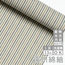 遠州綿紬 S-41 -若葉(わかば)-