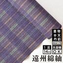 【送料無料】遠州綿紬 S8 -桔梗(ききょう)注染染め-綿 着物 洗える着物 大人可愛い おしゃれな きれいめ