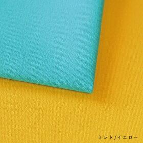 11号遠州帆布summercolor