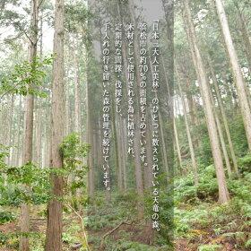 【天竜杉】手拭い用タペストリー壁掛棒
