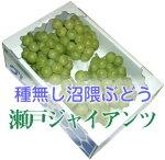瀬戸ジャイアンツ4〜5房(2kg)