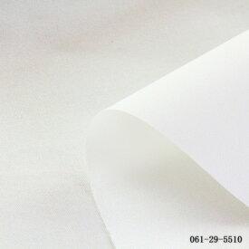≪P5倍≫布接着芯 ハードタイプ(厚手)5510 布接着芯/片面接着芯 ( 鞄の芯 帽子のツバの芯 ハンドメイド 手作り ソーイング )