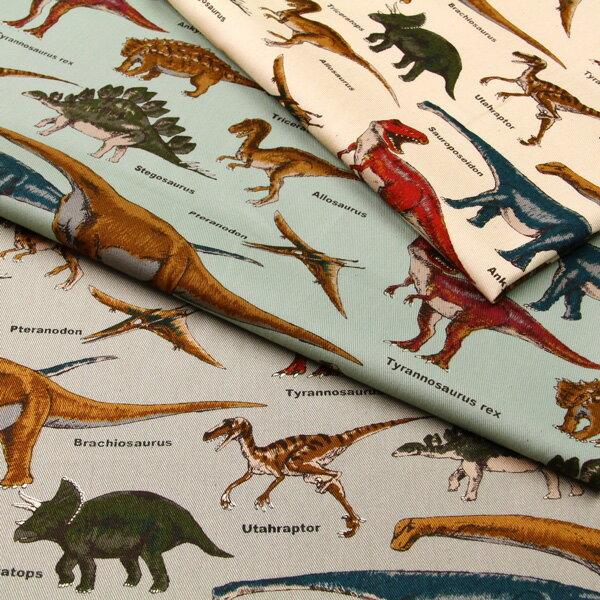 《ポイント5倍》恐竜博物館 ツイル生地 ( ハンドメイド dinosaur バッグ インテリア エプロン ポーチ 学校 入園入学 ) 50cm単位