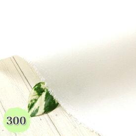 《5%OFF》接着芯 厚手 ≪300≫(厚手) ハード 片面布接着芯 ( 自立接着芯 カバン芯 布芯 織芯 バッグ芯 帽子芯 ハード片面接着 ) 50cm単位