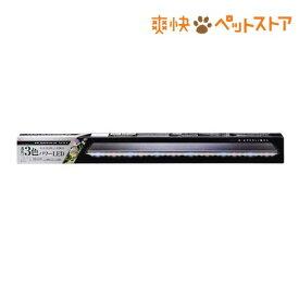 クリアLED POWER III 900(1コ入)【クリアLED】[爽快ペットストア]
