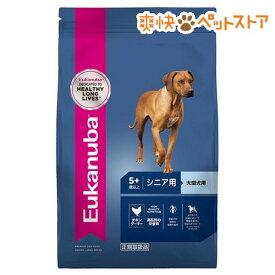 ユーカヌバ ラージ シニア 大型犬用 5歳以上(13.5kg)【d_euka】【ユーカヌバ(Eukanuba)】[爽快ペットストア]