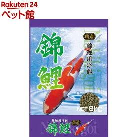 スマック 錦鯉(8kg)【スマック】[爽快ペットストア]