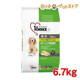 ファーストチョイス 成犬 1歳以上 小粒 チキン(6.7kg)【ファーストチョイス(1ST CHOICE)】[爽快ペットストア]