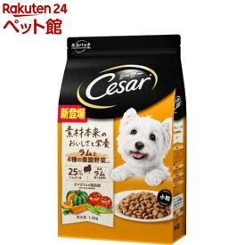 シーザー ドライ 成犬用 ラムと4種の農園野菜入り 小粒(1.5kg)【シーザー(ドッグフード)(Cesar)】[爽快ペットストア]