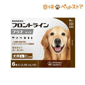 フロントラインプラス 犬用 L 20〜40kg未満(6本入)【フロントラインプラス】[爽快ペットストア]