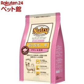 ナチュラル チョイス 超小型犬4kg以下用 成犬用 生後8ヶ月以上 チキン&玄米(800g)【ナチュラルチョイス(NATURAL CHOICE)】[ドッグフード][爽快ペットストア]