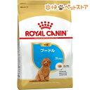ロイヤルカナン ブリードヘルスニュートリション プードル 子犬用(1.5kg)【ロイヤルカナン(ROYAL CANIN)】[ドッグフー…