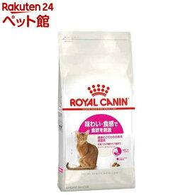 ロイヤルカナン フィーラインヘルスニュートリション セイバー エクシジェント(4kg)【d_rc】【d_rc15point】【dalc_royalcanin】【ロイヤルカナン(ROYAL CANIN)】[キャットフード][爽快ペットストア]