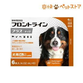 フロントラインプラス 犬用 XL 40〜60kg未満(6本入)【フロントラインプラス】[爽快ペットストア]