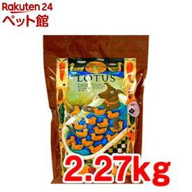 ロータス グレインフリー ダックレシピ 小粒(2.27kg)【ロータス】[ドッグフード][爽快ペットストア]