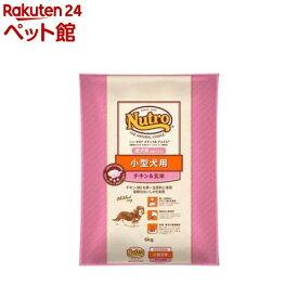 ニュートロ ナチュラル チョイス 小型犬用 成犬用 生後8ヶ月以上 チキン&玄米(6kg)【d_nutro】【ナチュラルチョイス(NATURAL CHOICE)】[ドッグフード][爽快ペットストア]