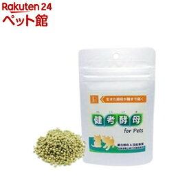 PN 健考酵母 for Pets(45g)【PN(ペットニーム)】[爽快ペットストア]