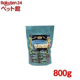 グレインフリーフィッシュレシピ 小粒(800g)[ドッグフード][爽快ペットストア]