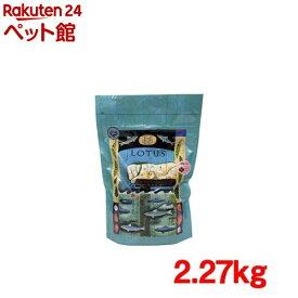 グレインフリーフィッシュレシピ 小粒(2.27kg)[ドッグフード][爽快ペットストア]
