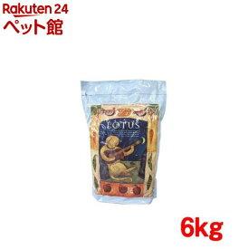 ロータス アダルト チキン レシピ 中粒(6kg)【ロータス】[ドッグフード][爽快ペットストア]
