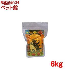 ロータス パピー チキン レシピ 小粒(6kg)【ロータス】[ドッグフード][爽快ペットストア]