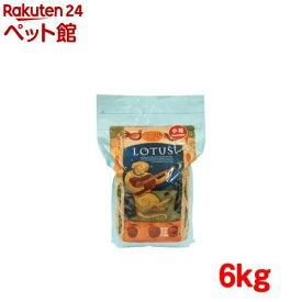 ロータス アダルト チキン レシピ 小粒(6kg)【ロータス】[ドッグフード][爽快ペットストア]
