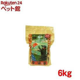 ロータス アダルト ラムレシピ 小粒(6kg)【ロータス】[ドッグフード][爽快ペットストア]