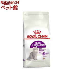 ロイヤルカナン フィーラインヘルスニュートリション センシブル(2kg)【d_rc】【d_rc15point】【dalc_royalcanin】【ロイヤルカナン(ROYAL CANIN)】[キャットフード][爽快ペットストア]