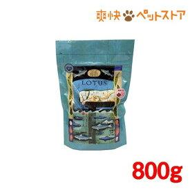 グレインフリーフィッシュレシピ 小粒(800g)[爽快ペットストア]