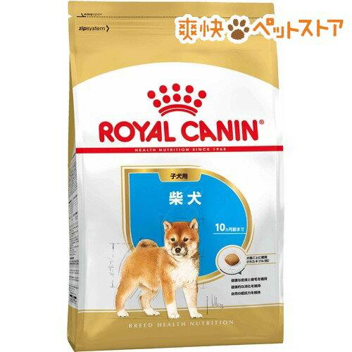 ロイヤルカナン ブリードヘルスニュートリション 柴犬 子犬用(3kg)【ロイヤルカナン(ROYAL CANIN)】[爽快ペットストア]