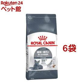 ロイヤルカナン フィーラインケアニュートリション オーラル ケア(1.5kg*6コセット)【d_rc】【d_rc15point】【ロイヤルカナン(ROYAL CANIN)】[キャットフード][爽快ペットストア]