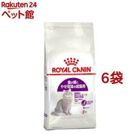 ロイヤルカナン フィーラインヘルスニュートリション センシブル(2kg*6コセット)【d_rc】【d_rc15point】【dalc_royalcanin】【ロイヤルカナン(ROYAL CANIN)】[キャットフード][爽快ペットストア]