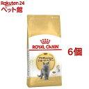 ロイヤルカナンFBN ブリティッシュ ショートヘアー 成猫用(2kg*6コセット)【d_rc】【d_rc20】【ロイヤルカナン(ROYAL …