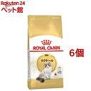 ロイヤルカナンFBN ラグドール 成猫用(2kg*6コセット)【d_rc】【d_rc20】【ロイヤルカナン(ROYAL CANIN)】[キャットフ…