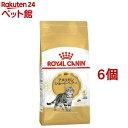 ロイヤルカナンFBN アメリカンショートヘアー 成猫用(2kg*6コセット)【d_rc】【d_rc20】【ロイヤルカナン(ROYAL CANIN…