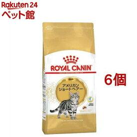 ロイヤルカナンFBN アメリカンショートヘアー 成猫用(2kg*6コセット)【d_rc】【d_rc20】【ロイヤルカナン(ROYAL CANIN)】[キャットフード][爽快ペットストア]