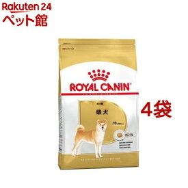 ロイヤルカナン ブリードヘルスニュートリション 柴犬 成犬用(3kg*4コセット)【ロイヤルカナン(ROYAL CANIN)】[ドッグフード][爽快ペットストア]