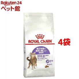 ロイヤルカナン FHN ステアライズド アペタイト コントロール(4Kg*4コセット)【d_rc】【dalc_royalcanin】【ロイヤルカナン(ROYAL CANIN)】[キャットフード][爽快ペットストア]