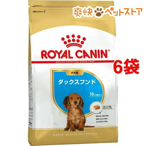 ロイヤルカナン ブリードヘルスニュートリション ダックスフンド子犬用(1.5kg*6コセット)【1806_rc】【ロイヤルカナン(ROYAL CANIN)】【送料無料】[爽快ペットストア]
