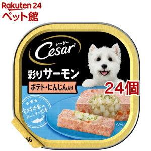 シーザー サーモン風味 ポテトとにんじん入り (100g*24コセット)【d_cesar】【シーザー(ドッグフード)(Cesar)】[ドッグフード][爽快ペットストア]