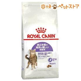 ロイヤルカナン FHN ステアライズド アペタイト コントロール(4Kg)【d_rc】【dalc_royalcanin】【ロイヤルカナン(ROYAL CANIN)】[爽快ペットストア]