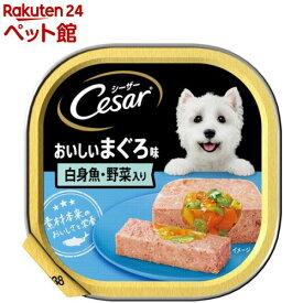 シーザー おいしいまぐろ 白身魚・野菜入り(100g)【d_cesar】【シーザー(ドッグフード)(Cesar)】[ドッグフード][爽快ペットストア]