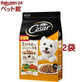 シーザー ドライ 成犬用 ラムと4種の農園野菜入り 小粒(1.5kg*2袋セット)【シーザー(ドッグフード)(Cesar)】[爽快ペットストア]