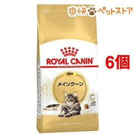 ロイヤルカナン FBN メインクーン 成猫用(2kg*6コセット)【d_rc】【ロイヤルカナン(ROYAL CANIN)】[爽快ペットストア]