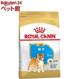 ロイヤルカナン ブリードヘルスニュートリション 柴犬 子犬用(3kg)【ロイヤルカナン(ROYAL CANIN)】[ドッグフード][爽快ペットストア]