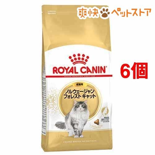【おまけ付き】ロイヤルカナンFBN ノルウェージャン フォレストキャット 成猫(2kg*6コセット)【d_rc】【ロイヤルカナン(ROYAL CANIN)】【送料無料】[爽快ペットストア]