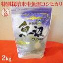 令和2年産新米☆特別栽培米中魚沼産コシヒカリ2kg(大島さん)